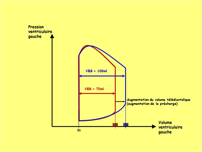 Physiologie des systèmes intégrés, les principes et..