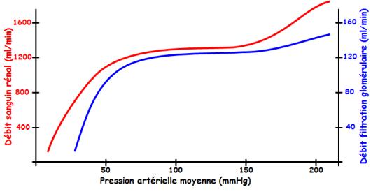 pression artérielle définition